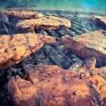 BBQ(バーベキュー)をするときに節約するおすすめの方法